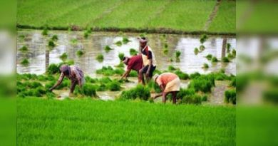 Agriculture bills passed in Lok Sabha, farmers protest